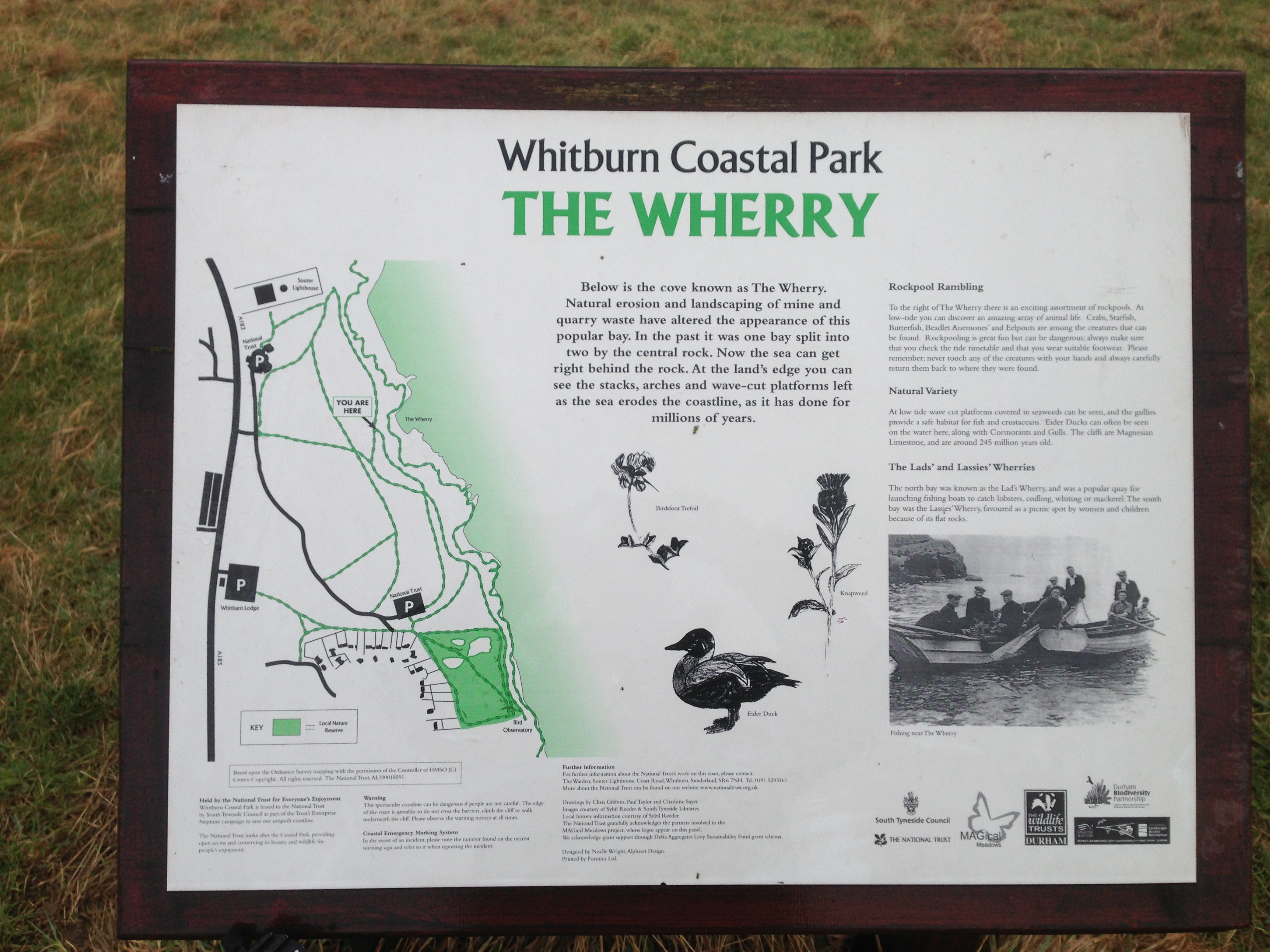 The Wherry Whitburn